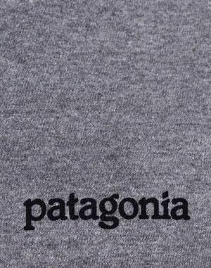 Triko - Patagonia - Fitz Roy Horizons Responsibili-Tee