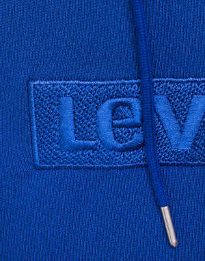 Levi´s® - Relaxed Graphic Hoodie