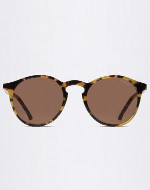 Sluneční brýle - Komono - Aston